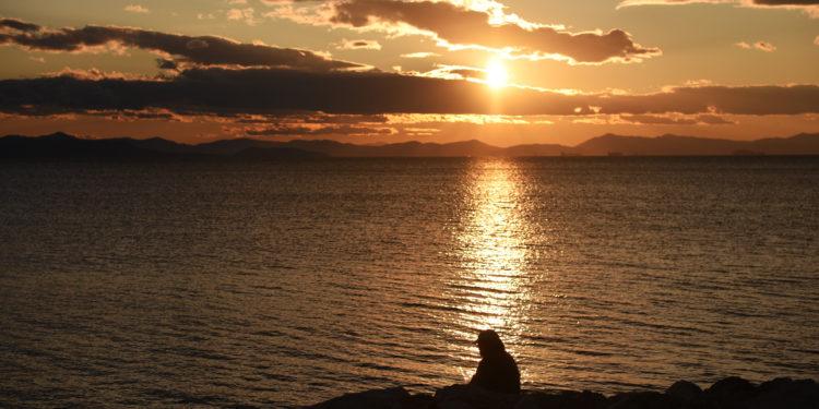 Αποτέλεσμα εικόνας για βολτα στο ηλιοβασιλεμα